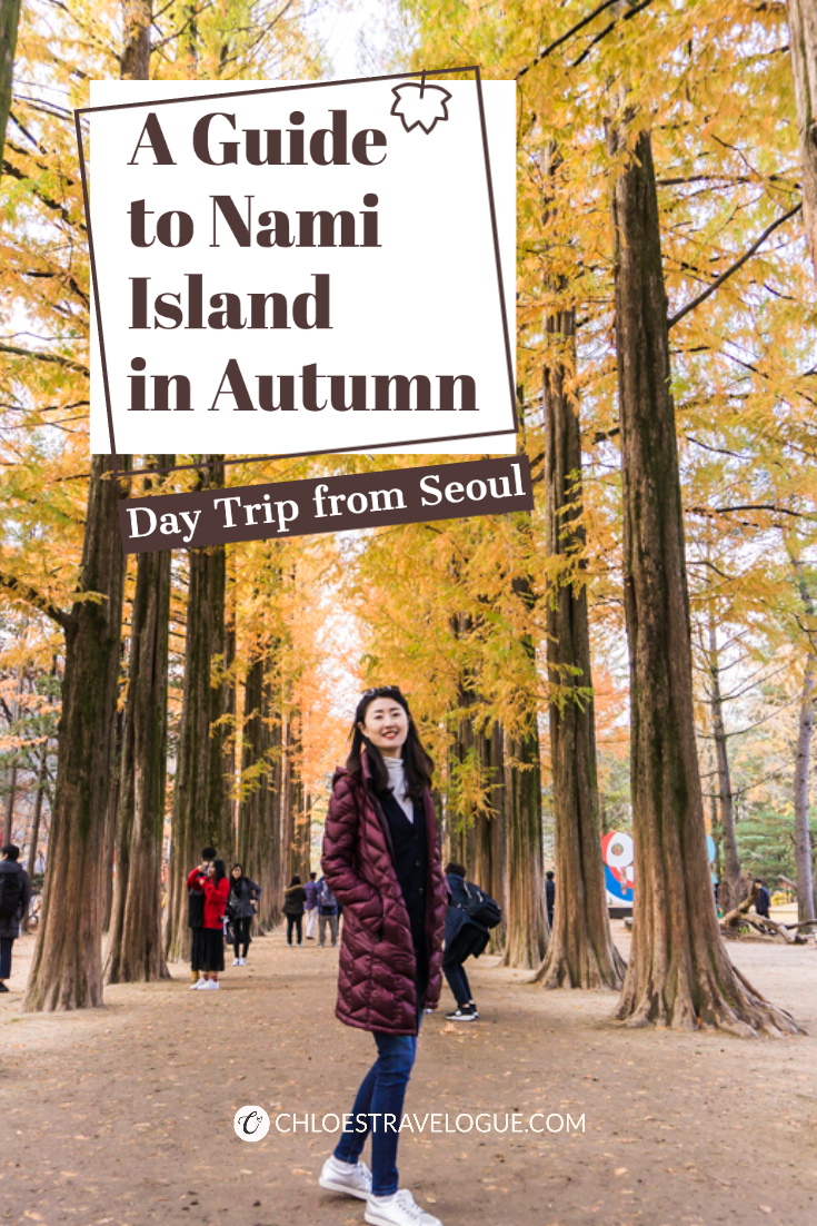 [Autumn in Korea] Hop on the best day trip from Seoul with this detailed guide of Nami Island and the Garden of Morning Calm to enjoy the stunning autumn foliage! | #NamiIsland #NamiIslandAutumn #DayTripfromSeoul #GardenofMorningCalm #AutumninKorea #asiatravel