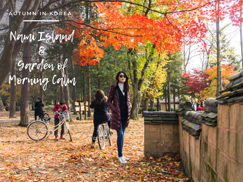 Autumn in Korea: Nami Island and the Garden of Morning Calm | Hop on the best day trip from Seoul with this detailed guide of Nami Island and the Garden of Morning Calm to enjoy the stunning autumn foliage! | #NamiIsland #Korea #GardenofMorningCalm #AutumninKorea
