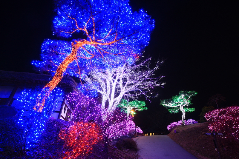 Garden of Morning Calm: Starlight Garden Festival in winter | #GardenofMorningCalm #WinterinKorea #Korea #Gapyeong