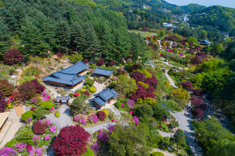 Garden of Morning Calm: Spring | #GardenofMorningCalm #SpringinKorea #Korea #Gapyeong