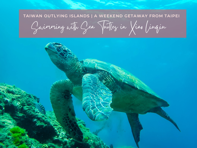 Xiaoliuqiu: Best Taiwan Island for Swimming with Sea Turtles