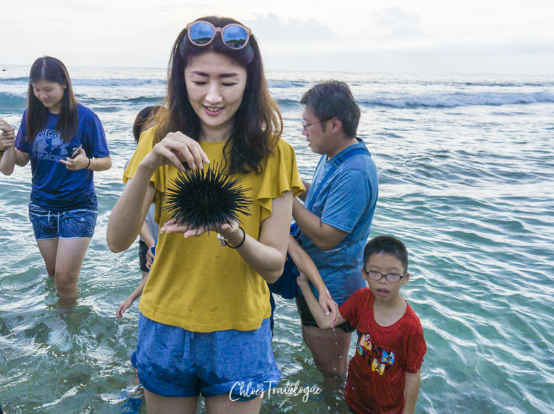 Xiao Liuqiu Island: Intertidal Zone Tour | #Xiaoliuqiu #liuqiu #lambai #TravelTaiwan #Beachvacation #ecotour