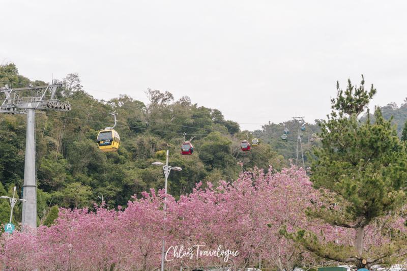Sun Moon Lake Taiwan: Things to Do + Itinerary | Sun Moon Lake Ropeway || #SunMoonLake #TaiwanItinerary #TaichungDayTrip #TravelTaiwan #AsiaTravel