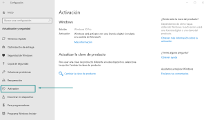 windows10_pro-choam-net