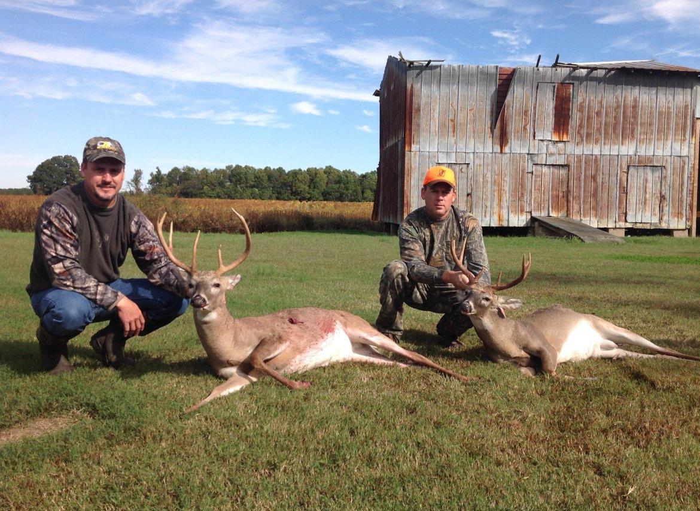 Whitetail Deer hunting North Carolina