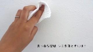 壁紙のシミの落とし方