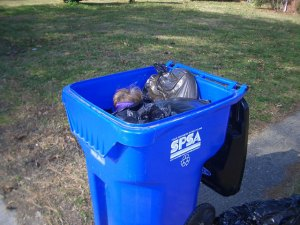 Blue recycling bin at the side of the road. The open lid displays several full trashbags and the blindfolded head of a girl.