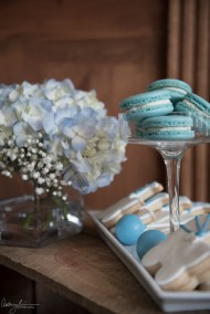 Rustic baby shower blue macaron