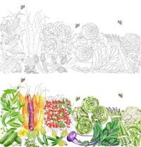 Edible Paradise: A Food Lover's Coloring Book (Giveaway ...