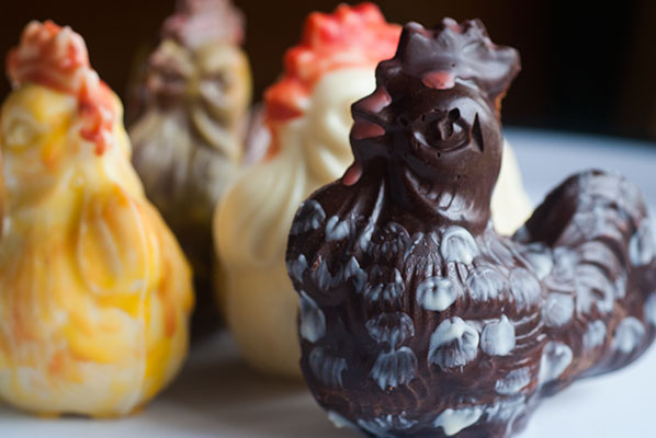 122_chicken-group_5870