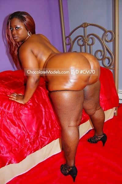 DVD CM70 Featuring Mz Booty Cubana Blaze  Barbie  Big