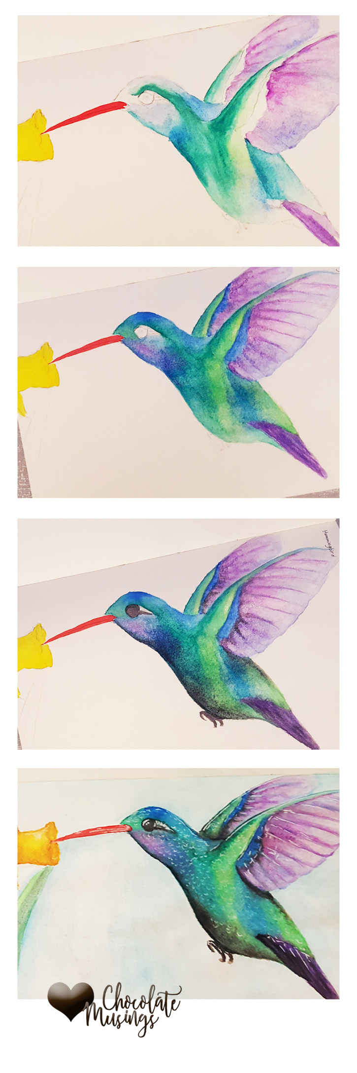 Hummingbird watercolor painting progression