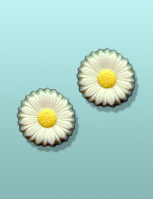 2 pc. Chocolate Daisy Flower Party Favor