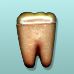 3D Chocolate Tooth Molar I