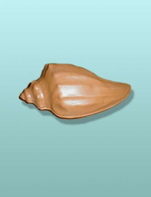 3D Chocolate Conch Shell X-Large