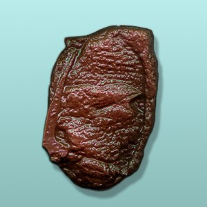 3D Chocolate Steak Party Favor