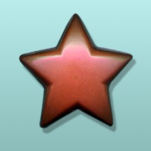 Chocolate Star Large Party Favor
