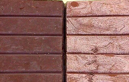 chocolatebloom