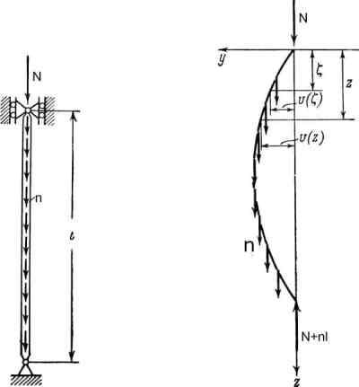 Euler Error