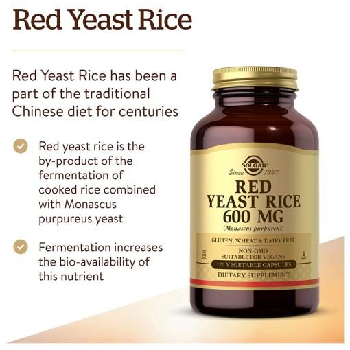홍국쌀 영양제 아마존
