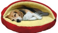 Dog Beds and Accessories Reviews, Ratings and Bestsellers ...