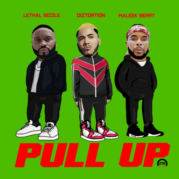 Diztortion, Lethal Bizzle & Maleek Berry - Pull Up