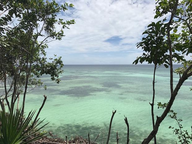 Philippinen Flower Beach