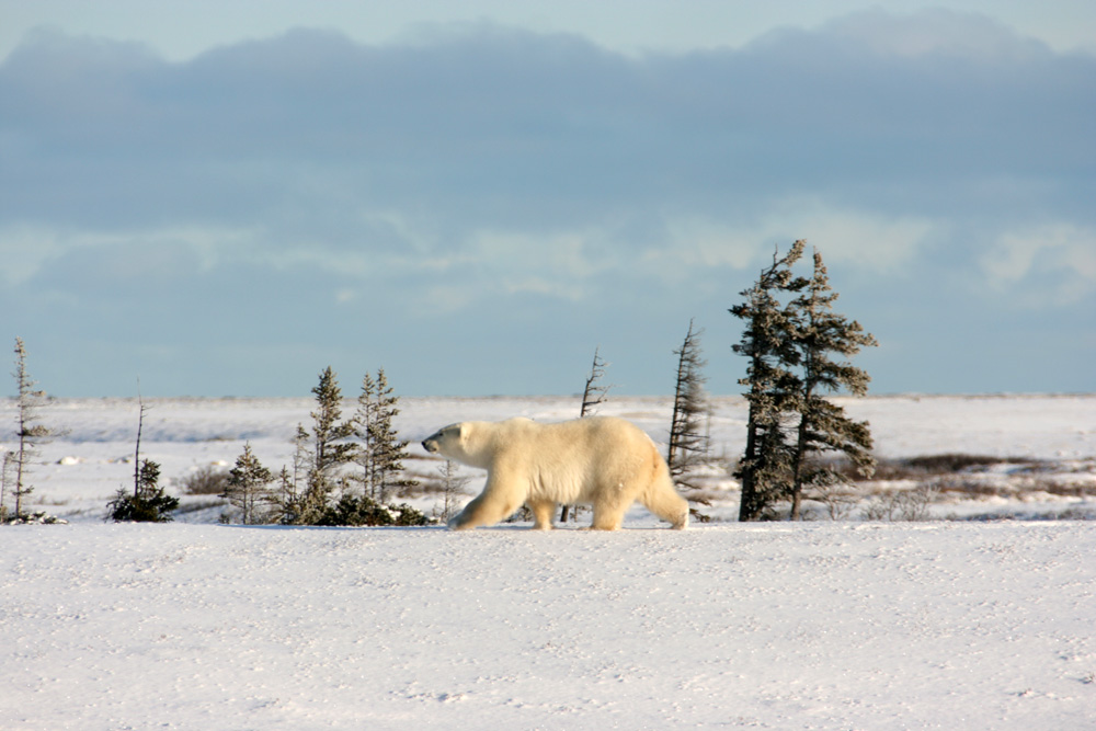 Kanada Reisetipps - Überblick über das Land