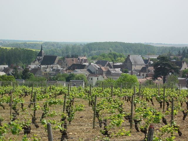 Reuilly : vue sur le vignoble