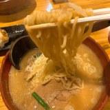 【宇都宮】幸麺(こうめん) チーズ味噌ラーメンが絶品の行列店!