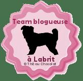 blogueuselabrit