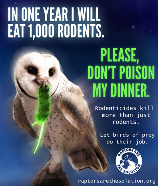A Raptors Are the Solution anti-poison poster.