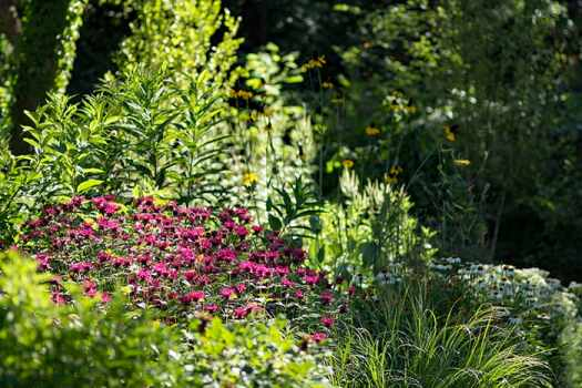 Native plant gardens are environmentally sound. Replace lawn with native plants.