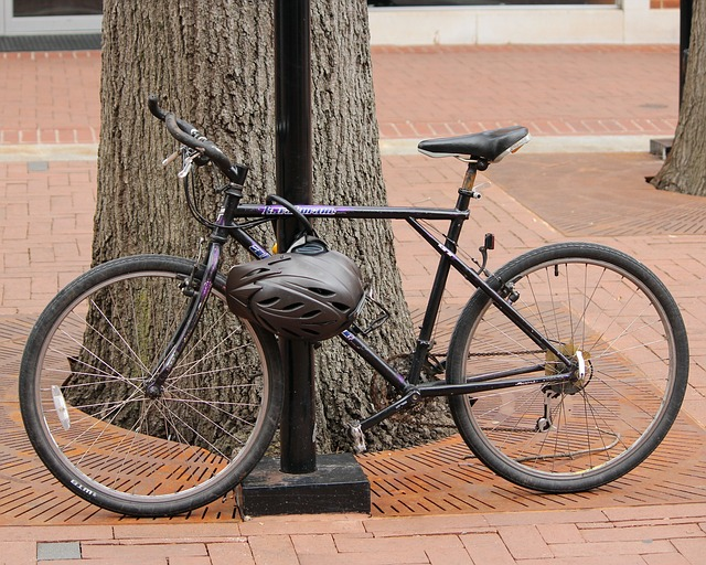Types of Bike Locks