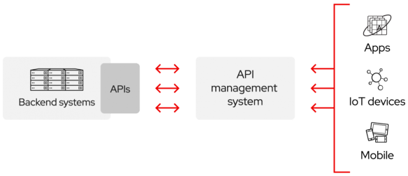 API Management System illustration