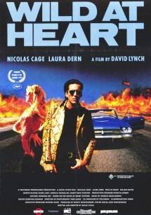 Dzikość serca