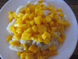 Breakfast of rice with coconut milk and mango on the beach of Koh Rong, Cambodia. Not mange. Damn.