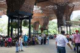 Jardín Botánico - Botanical Garden for Feria de las Flores in Medellin, Colombia.
