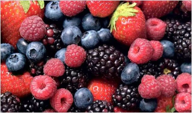 Increase your Brain Power with these 5 Fruits