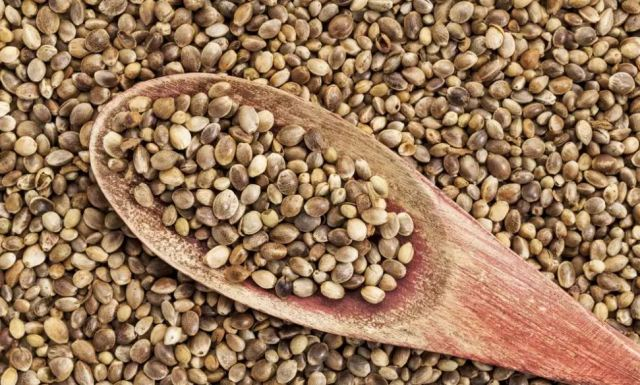 Best Healthy Seeds for Eating