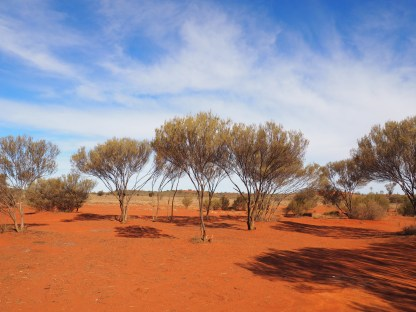 Camping spot near Uluru where we pitched our tent