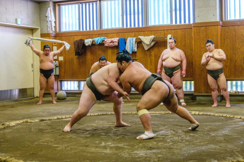 sumo wrestlers trying to push each other out