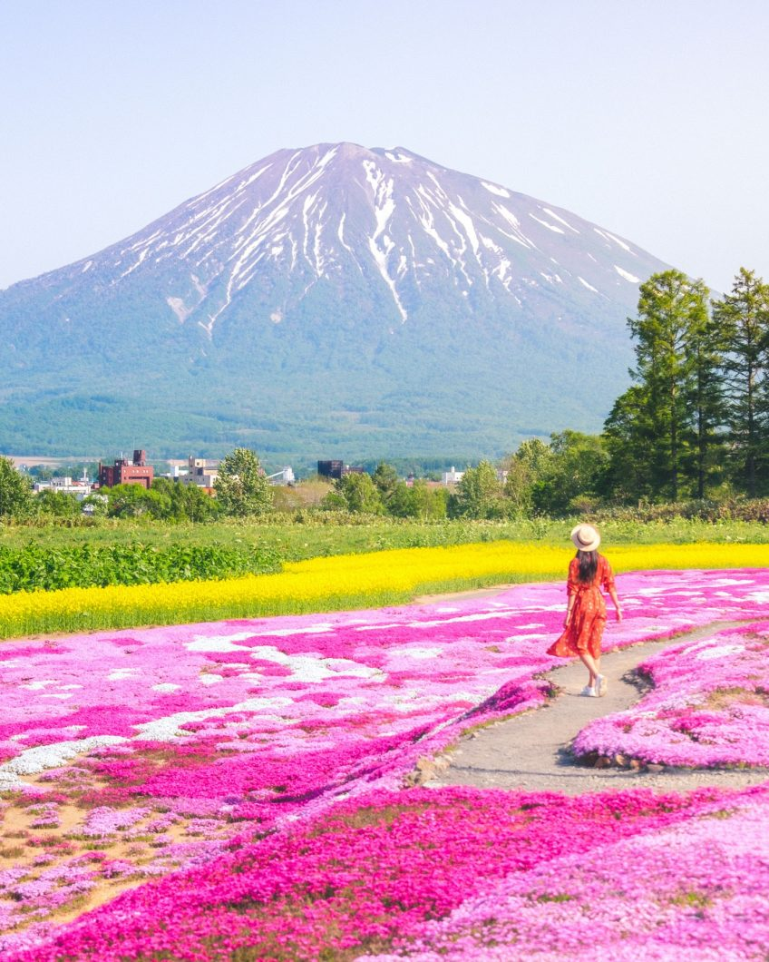Hokkaido Summer Road Trip - Mr Mishima's Garden