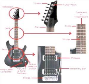 Diagnose Anatomy  guitar