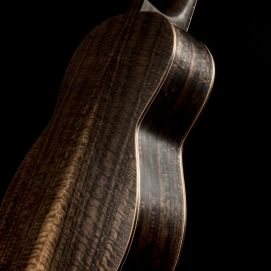 Paco Chorobo-Eucalyptus-Fondo