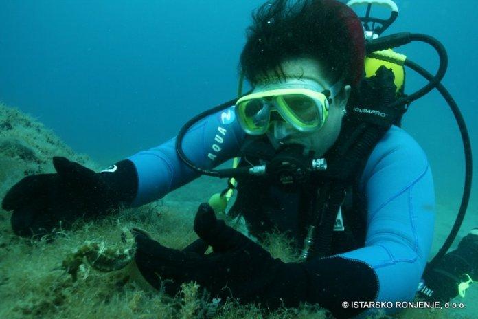 Setkání s koníkem ři kurzu potápění