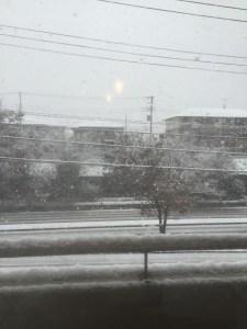 snow_chiba