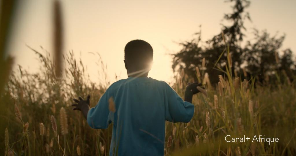 CANAL+AFRIQUE / Chaque jour ensemble
