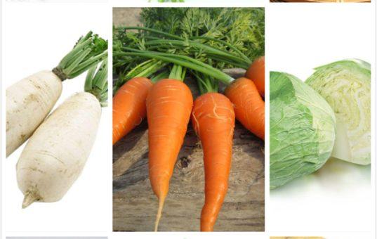《蘇菲說故事》007 今天吃什麼呢?蔬菜篇