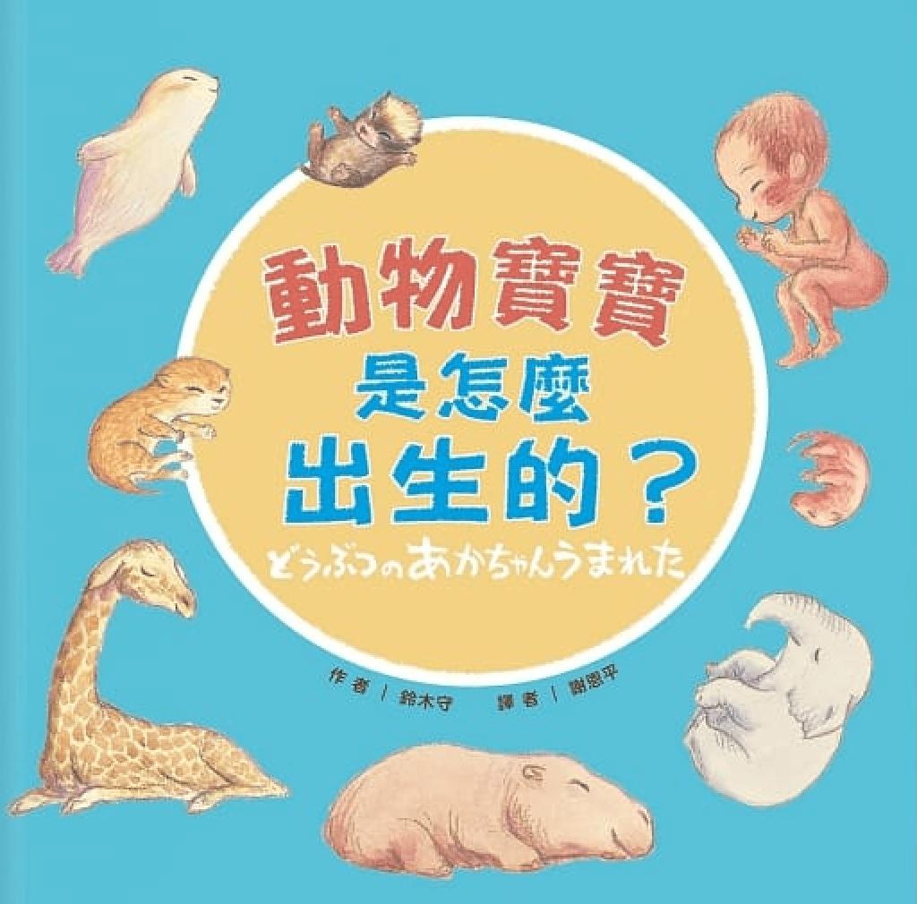 《蘇菲說故事》240 動物寶寶是怎麼出生的?